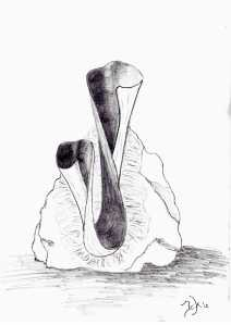 Ontwerp grafmonument - gemaakt in Sodaliet
